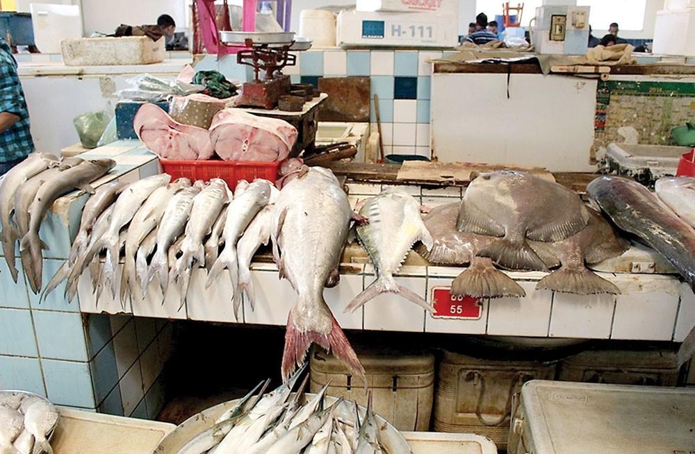 القبض على ثلاثة أشخاص قاموا بسرقة كميات كبيرة من الأسماك تقدر قيمتها بـ 1000 دينار