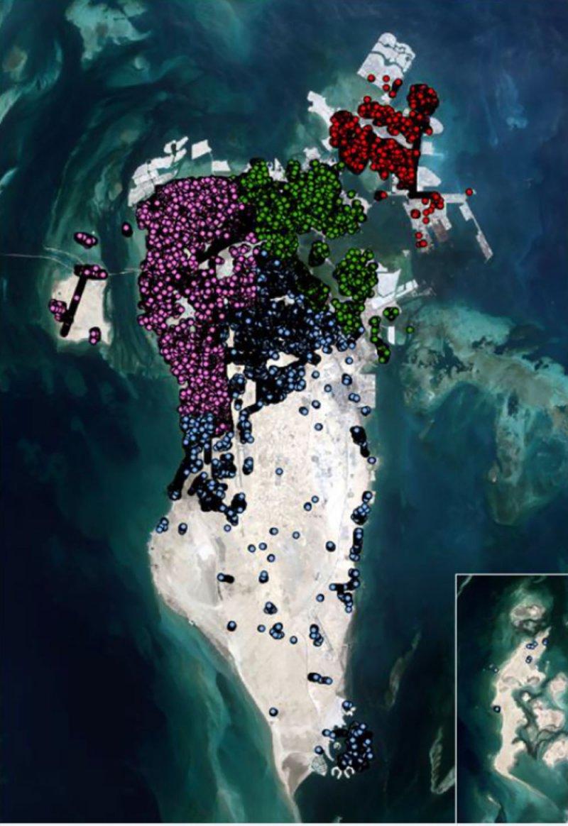الوطنية لعلوم الفضاء: 257 ألف نخلة في البحرين