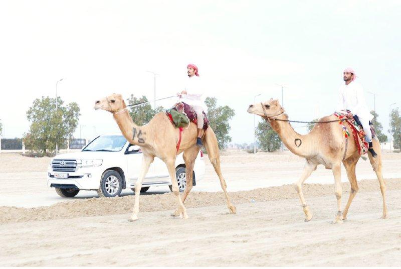 10 متسابقين جدد يتنافسون في مسابقة فارس الموروث